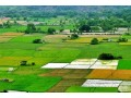 want-to-buy-land-small-0